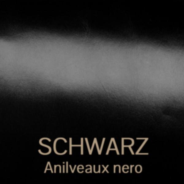 schwarz_anilveaux - glanzgestossenes Leder