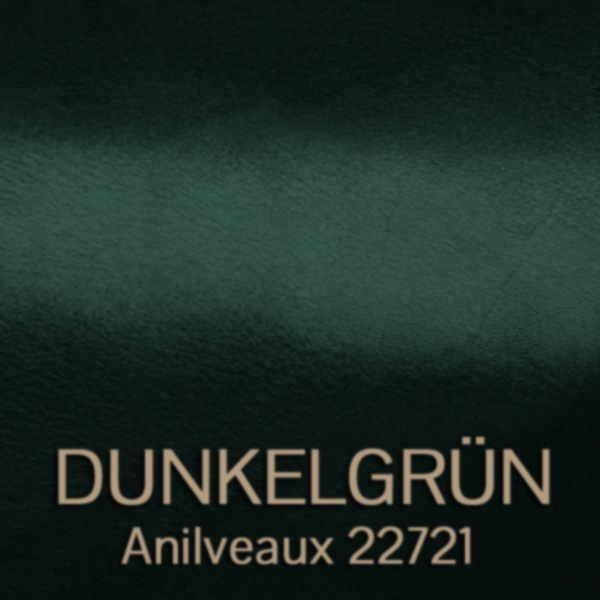 dunkelgruen_anilveaux_22721 - glanzgestossenes Oberleder